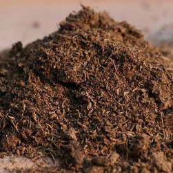 Підготовка грунту для вирощування саджанців