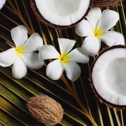 Диво кокос. Відбілюємо зуби кокосовим маслом? Корисні властивості кокосового масла.