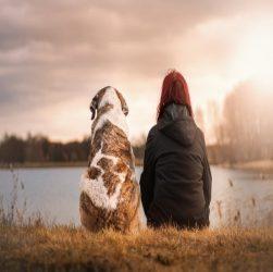 Як вибрати породу собаки ?